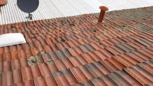 Amedeo roofing and modelling Perth